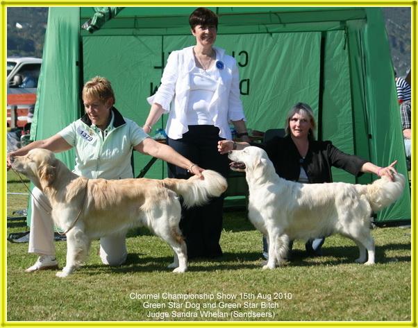 Clonmel Dog Show